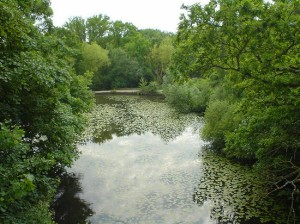 The River Fleet